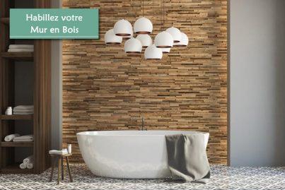 Habiller un Mur en bois interieur